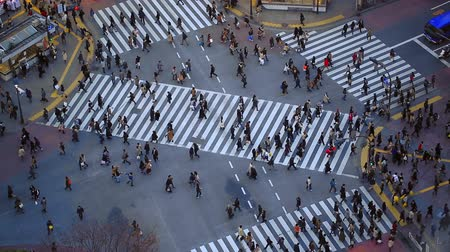 kerület : v60. City pedestrian traffic of people crossing the famous Shibuya intersection in Tokyo.