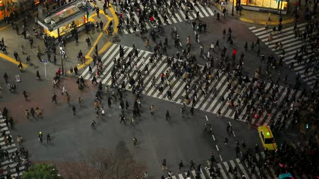 скрестив : v62. City pedestrian traffic of people crossing the famous Shibuya intersection at night in Tokyo.