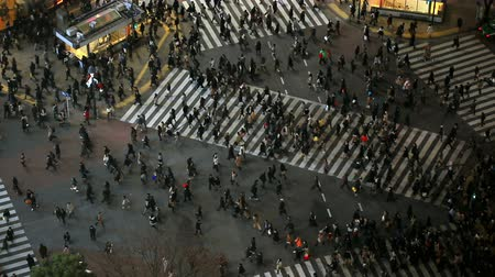 encruzilhada : v64. City pedestrian traffic of people crossing the famous Shibuya intersection at night in Tokyo.