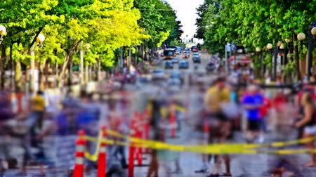 múlt : v11. City pedestrian traffic time lapse before a public event using a photo effect.