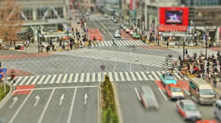 crosswalk : v19. City pedestrian traffic time lapse of Shibuya crosswalk in Tokyo.