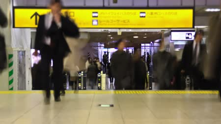 viagens de negócios : v21. City pedestrian traffic time lapse in a Tokyo train station.