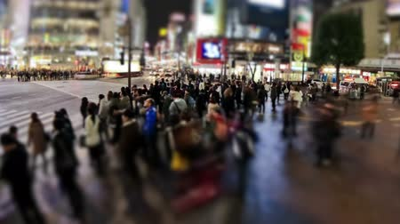 unrecognizable people : v24. City pedestrian traffic time lapse of Shibuya crosswalk in Tokyo at night.
