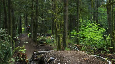 alpy : v10. A mountain biker going over jumps at a public bike park near Seattle.