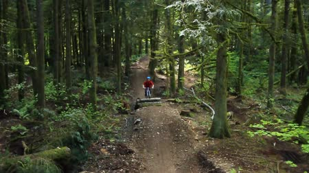 ciclismo : v23. A mountain biker going over jumps at a public bike park near Seattle. Stock Footage