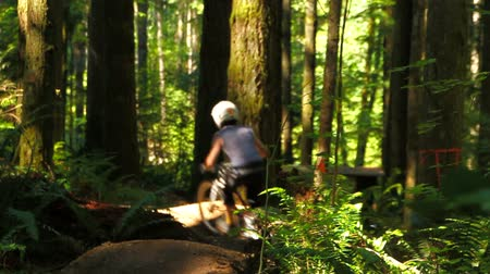 outdoor : v45. A mountain biker going over jumps at a public bike park near Seattle.