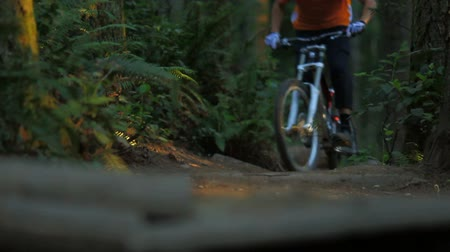 dirt : v53. A mountain biker riding a trail towards the camera at a public bike park near Seattle. Follow focus shot.