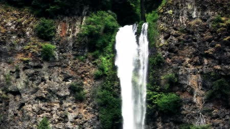 uzun boylu : v16. Two clips of Multnomah Falls using a color correction effect. Stok Video
