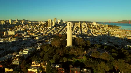 san francisco : San Francisco Aerial v37 Flying low over Telegraph Hill and close to Coit Tower at sunrise. Stock Footage