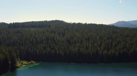 birdseye : Oregon Aerial v2 Flying low around and over Clear Lake near Sisters Stock Footage