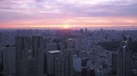 tokyo government : Japan Tokyo Aerial v29 Flying over downtown Shinjuku panning with cityscape views sunrise Stock Footage