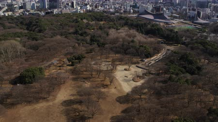 shibuya : Japan Tokyo Aerial v96 Flying low over Yoyogi park panning up to cityscape views Stock Footage