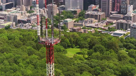 Montreal Quebec Aerial v119 Birdseye flying across Mount Royal park with downtown and cityscape views Stok Video