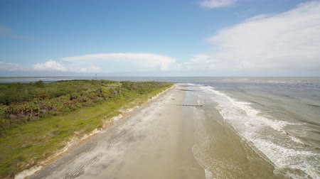 rookery : South Carolina Charleston Folly Beach Aerial v34 Flying low over Folly Beach 1017 Stock Footage