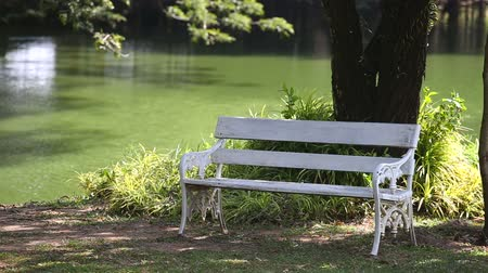 стулья : Empty white bench in garden near lagoon Стоковые видеозаписи