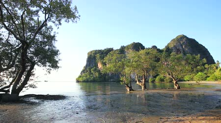 tajlandia : Railay beach krabi. Thailand. Wideo