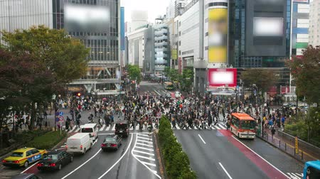lapse : People walking the Shibuya crossing, Tokyo, Japan Stock Footage