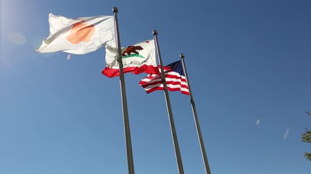 apple headquarter : Cupertino, CA, USA - August 15, 2016: close up of flags in front of Apple Headquarters with American Flag and flag with Apple icon. Stock Footage