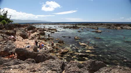 Оаху : Oahu, Hawaii - August 26, 2016:Sharks Cove panorama, one of best scenic stops along the popular North Shore. Sharks Cove is the second best snorkeling site in Oahu, Hawaii. Стоковые видеозаписи