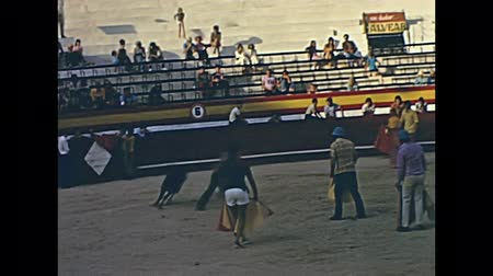 baleár : Ibiza, Spain - circa 1973: Historical restored footage bullfighters with traditional clothing bullfighting a young bull in the bullring San Rafael. Bullfighting is banned in Balearic Islands from 2016