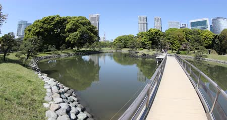 chuo city : Tokyo, Japan -April 20, 2017:Modern buildings of Shiodome Shimbashi and Tokyo Tower reflection of Hamarikyu Gardens with Wooden path. Hama Rikyu oriental garden in central Tokyo Chuo district. Stock Footage