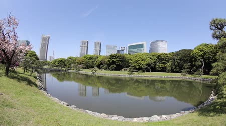 chuo city : Tokyo, Japan - April 20, 2017:Hamarikyu Gardens time lapse in Tokyo, Chuo district, Sumida River, Japan. Oriental japanese garden. The Hama Rikyu is in contrast to the skyscrapers of city.