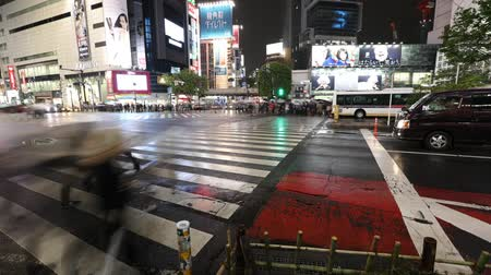 busiest : Tokyo, Japan - April 22, 2017: night time lapse of unidentified pedestrians in Shibuya Crossing ground view, busiest crosswalks in the world. Shibuya is one of Tokyos most famous neighborhoods. Stock Footage
