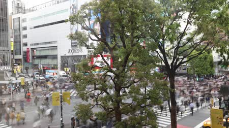 busiest : Tokyo, Japan - April 22, 2017: aerial view time lapse from Occitane Cafe of unidentified pedestrians in Shibuya Crossing, the busiest crosswalks in the world.Shibuya Crossing, popular Tokyo attraction Stock Footage