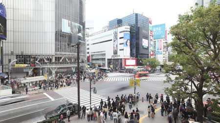 busiest : Tokyo, Japan - April 22, 2017: aerial view time lapse from Occitane Cafe of pedestrians in Shibuya Crossing, one of the busiest crosswalks in the world.Shibuya Crossing a popular attraction in Tokyo Stock Footage
