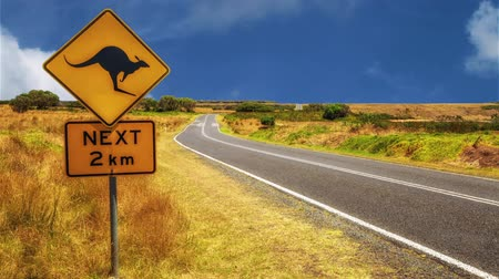 tasmania : Warning sign for kangaroo crossing on Australian country road. Stock Footage