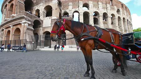 flavium : Rome, Italy - May 12, 2016: Typical horse-drawn carriage with tourists in front of Colosseo, Colosseum, Flavian Amphitheatre, the largest amphitheater in the world and one of the symbols of Rome. Stock Footage