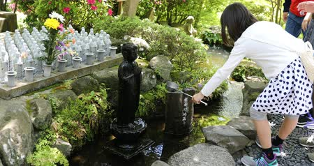 bohyně : Kamakura, Japan - April 23, 2017: child worshiping of Jizo Statue pouring water on Jizos head with a ladle. Hase-dera Temple in Kamakura. Built to house a big wooden statue of Kannon goddess of mercy Dostupné videozáznamy