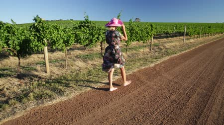 маргарита : Vineyard winery grape picking. Harvest farming to make white wine. Caucasian woman with big hat enjoys at Wilyabrup in Margaret River or wine region in Western Australia. Popular wine tasting tours. Стоковые видеозаписи