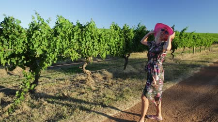 маргарита : Scenic landscape of vineyard winery grape picking at sunset light. Happy blonde woman with open arms enjoys the harvest at Wilyabrup in Margaret River known as the wine region in Western Australia. Стоковые видеозаписи