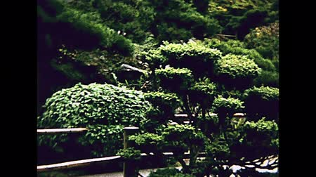 archívum : Old San Francisco Japanese Tea Garden, Temple Gate and Pagoda in Golden Gate Park. Archival footage in 1980s. California, United States in year 1980.