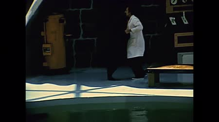 seaquarium : Miami, Florida, United States - Circa 1978: seal show at Seaquarium of Miami in 70s with animal trainer. The historical United States of America in 1970s. Stock Footage
