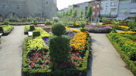 episcopal : Braga, Portugal - August 12, 2017: Public garden outdoor alongside the eastern wing of medieval Episcopal Palace of Braga in Praca do Municipio, Braga, Portugal. Colorful flowers in the summer season. Stock Footage