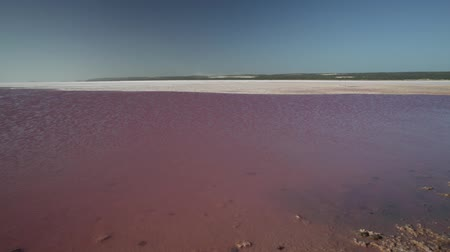 salt lagoon : Picturesque shore Pink Salt Lake, Gregory in Western Australia. Blue sky with clouds reflecting in Hutt Lagoon between Geraldton and Kalbarri, a vivid pink color for the presence of algae in summer.