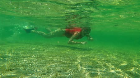 rekin : Female apnea bikini swims in tropical sea. Underwater background of a woman snorkeling and doing skin diving. Watersport activity in the tropical Little Lagoon in Shark Bay, Denham, Western Australia.