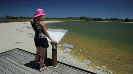 доисторический : Blonde woman on wooden platform, pointing at Stromatolites on Lake Thetis, a saline coastal lake, Cervantes, Western australia. Tourist enjoys of Australian landscape. Sunny with blue sky. Стоковые видеозаписи