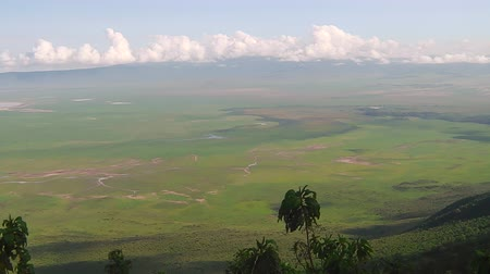 np : panorama of Ngorongoro Conservation Area of Tanzania in Africa.
