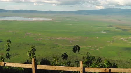 Серенгети : panorama of Ndutu Area of Ngorongoro of Tanzania in Africa.