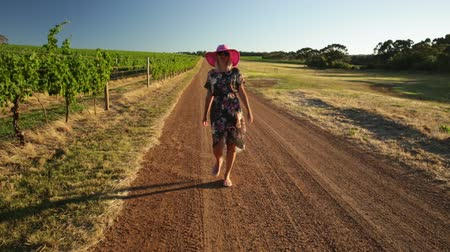 szőlőművelés : Beautiful blonde carefree woman in the vineyards. Happy woman walking in the wine region of Margaret River, Western Australia.