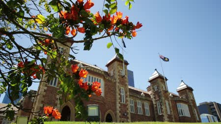 copyspace : Bougainvillea in foreground with sunbeams in Government House Gardens, Perth city. Government House east front, the residence of Governor of Western Australia on background. Blue sky. Copy space.