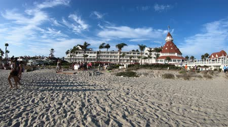 güneybatı : San Diego, California, United States - August 1, 2018: view from white beach of Victorian Building of Hotel del Coronado, historic beachfront resort in Coronado Island. Summer holidays in West Coast.