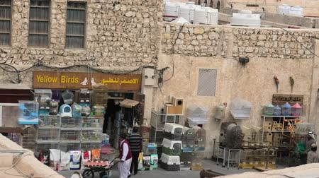 inseparable : Doha, Qatar - February 19, 2019: animal kingdom pet shop along pedestrian road inside Bird Souq, the animal market and popular tourist attraction in Doha center. Bottom view of historic building. Stock Footage