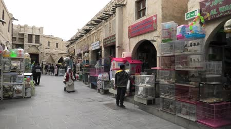 inseparable : Doha, Qatar - February 19, 2019: market street of Bird Souq Market, full of cages with birds and funny pets in Doha center, Middle East, Arabian Peninsula.
