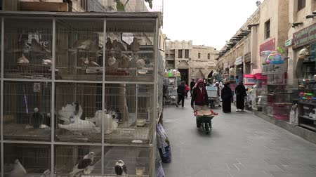 inseparable : Doha, Qatar - February 19, 2019: cages with birds in foreground at Bird Souq inside Souq Waqif, the old market and popular tourist attraction in Doha center, Middle East, Arabian Peninsula.