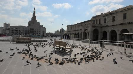 mosque doha : Doha, Qatar - February 20, 2019: Many pigeons flying in Souq Waqif in front of Fanar Islamic Cultural Center with Mosque and Minaret on background. Middle East, Arabian Peninsula, Persian Gulf. Stock Footage
