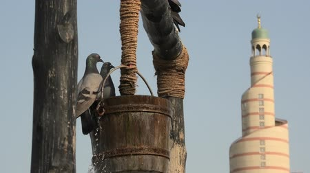 mosque doha : Pigeons fly and drink around old well fountain, iconic landmark in the middle of Souq Waqif in Doha city center, Qatar. Middle East, Arabian Peninsula. Sunny blue sky.Doha Mosque on blurred background Stock Footage